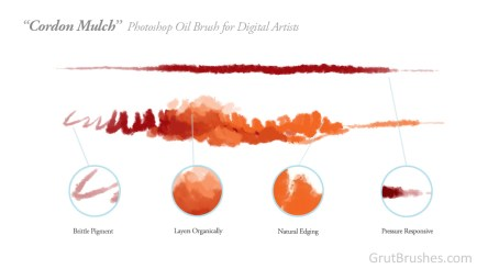 Elements of the 'Cordon Mulch' digital oil paint brush for Photoshop.