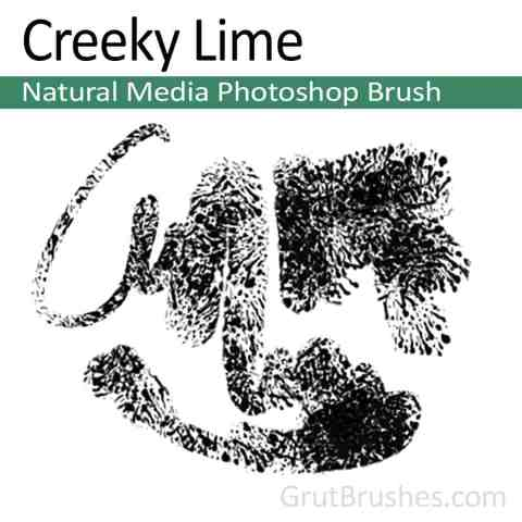 Photoshop Natural Media Brush 'Creeky Lime'