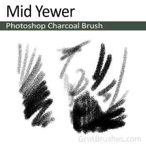 """""""Mid Yewer"""" Charcoal Brush for Photoshop"""