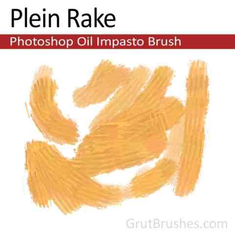 'Plein Rake' Impasto Oil Photoshop Brush