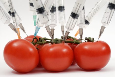 Genetic Engineering Food Producers Fight Vermont in Congress