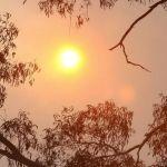Australia PM's adviser says climate change a UN hoax