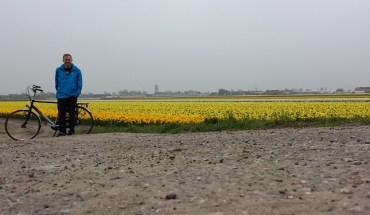 daffodils biking keukenof