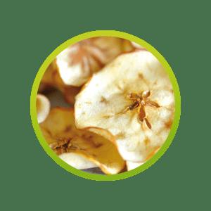 manzana-deshidratada
