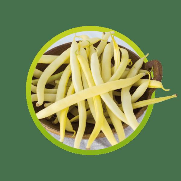 vainitas-amarillas