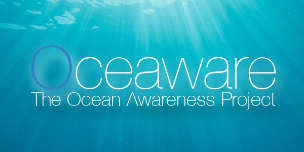 The Ocean Awareness Project