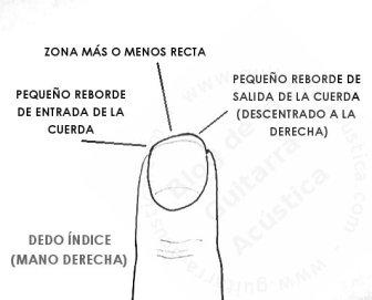 forma_una