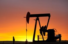 OPEC Lifts 2013 World Oil Demand Growth Forecast