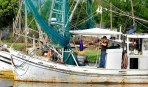 Lafayette Advertiser: Louisiana Shrimpers Battle for the Bottom Line
