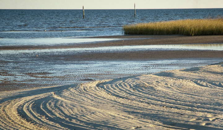 Gulf Restoration Plan Announced by NOAA