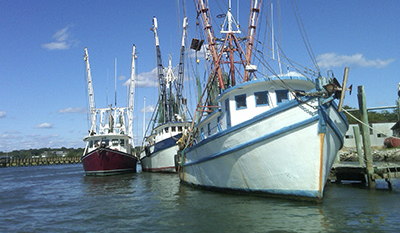 Marine Resource Education Program Southeast Demystifies Fishery Science