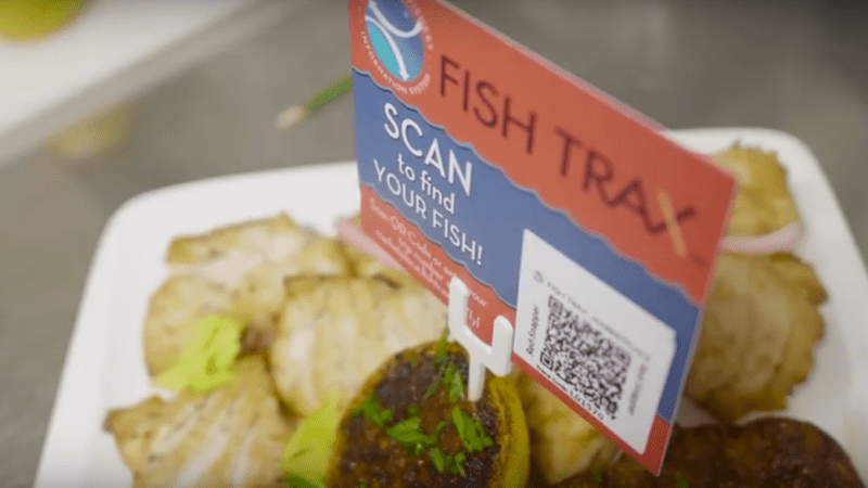 Several Gulf Businesses Featured in FishTrax™ Video about Trackable Seafood