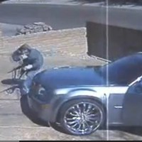 Homeowner Defends Against 4 Armed Robbers During Daytime Home Invasion