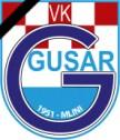Gusar_logo_žalost