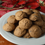 Cranberry Molasses Spice Cookies