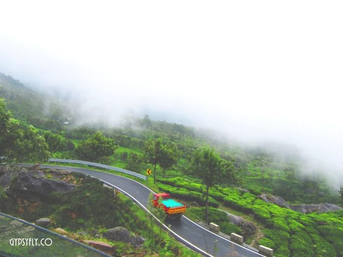 Road Trip amidst Tea Plantations | Munnar, Kerala