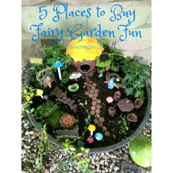 Small Crop Of The Fairy Gardens