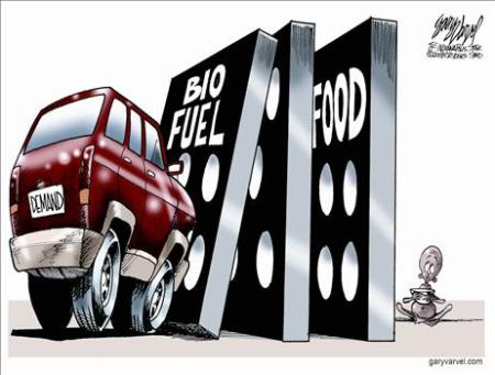 biofuel domino