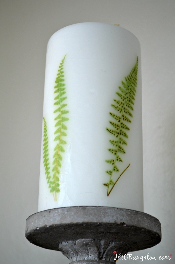 10 minute easy project on how to add a fern image to a candle by H2OBungalow