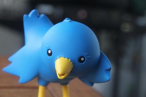 Twitter tweet photo