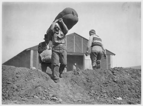Clem Albers. Manzanar, California. 4/2/42. Evacuees of Japanese descent carry their personal effects preparatory to setting up housekeeping at this War Relocation Authority center.