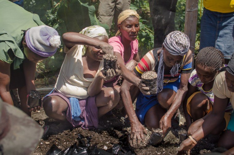 Farmers of Morne Michelle planting seeds for a nursery which may