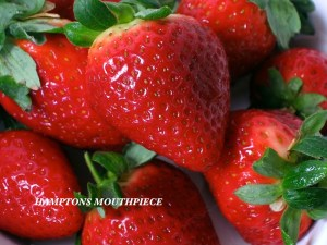 Strawberries-27159
