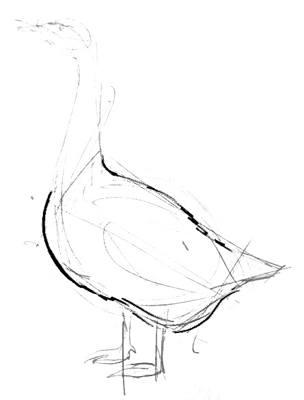 Нарисуем туловище гуся