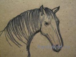 Рисуем голову лошади