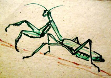 Богомол рисунок 13