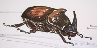 Жук-носорог рисунок