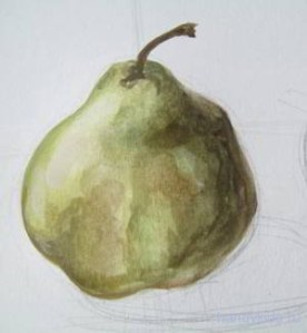 Груша рисунок