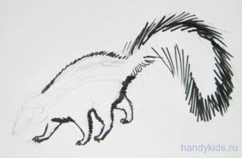 Как нарисовать скунса