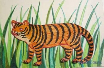 Раскраска тигр в траве