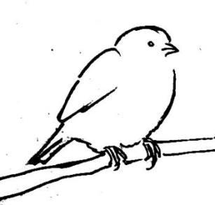 Рисунок -воробей на ветке