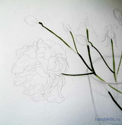 Как нарисовать цветок розы карандашом