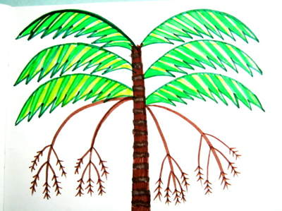 Раскраска Финиковая Пальма