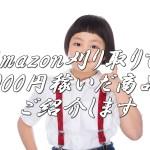 ネット仕入れAmazon販売で5,000円稼いだ商品を大公開