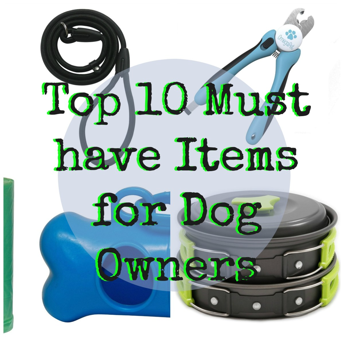 Top 10 Must have Items for Dog Owners