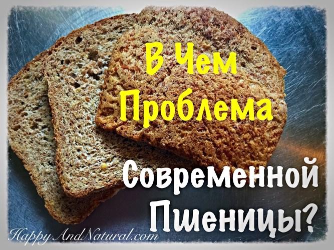 В чем вред Пшеницы?