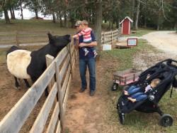 Small Of Kinsey Family Farm