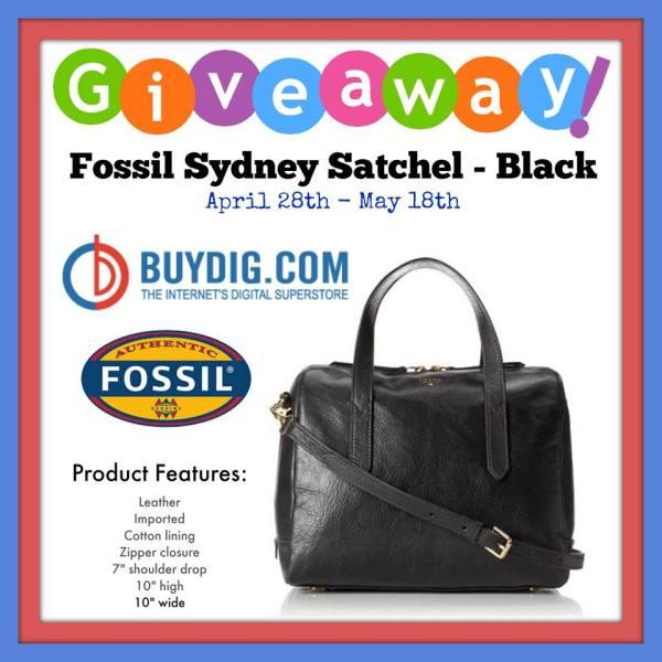 BuyDig.com's Fossil Sydney Satchel Giveaway
