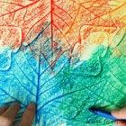 leaf-rubbings.jpg