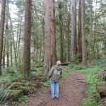 Mike explores the forest along the North Umpqua River