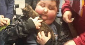 Little Boy That Is Terminally Ill Gets Shelter Cat That Loves Him To Pieces!