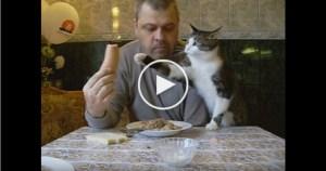 Cute Cat Interrupting Man While He Is Eating. LOL. So Cute.