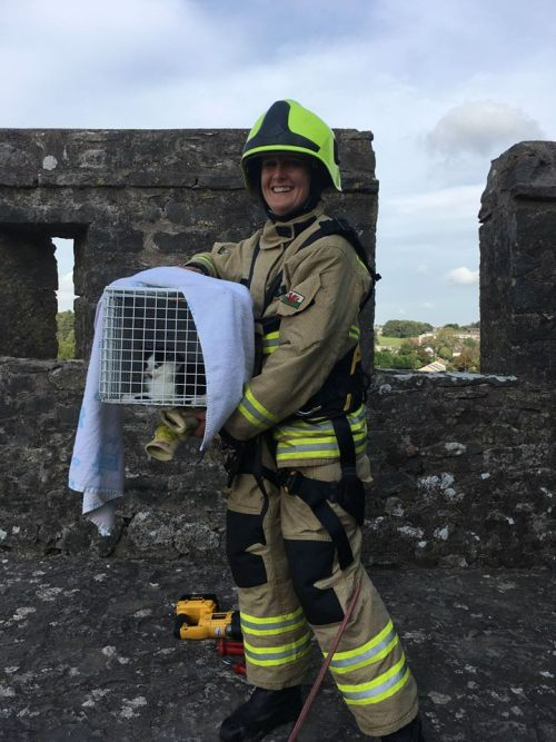 Kitty Saved From Razor Wire On 50-Foot High Castle Wall