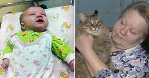 Hero Cat Rescued Abandoned Baby From The Freezing Streets