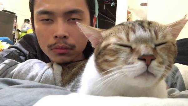 Cat And Her Human Bob Heads In a Rhythm Of A Song. Just Amazing !