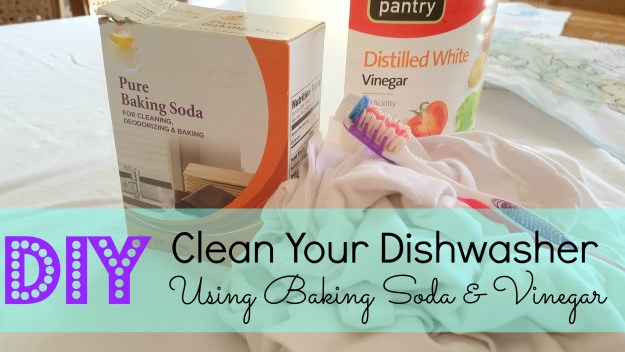 clean your didshwasher